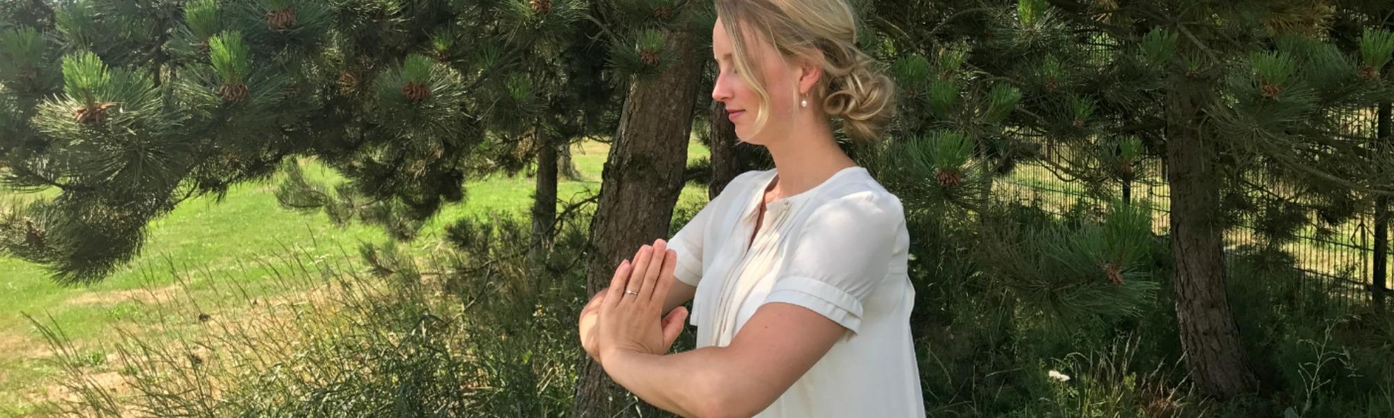 <a href='https://www.acupunctuurprinsen.nl/qigong'></a>